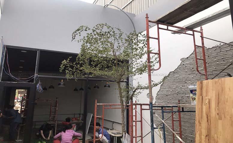Giai đoạn hoàn thiện thiết kế quán trà sữa TocoToco