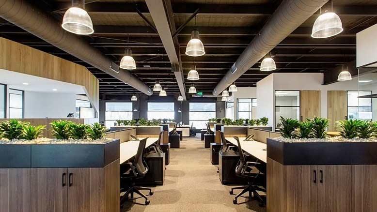 Thiết kế văn phòng tích hợp không gian xanh - Eco office