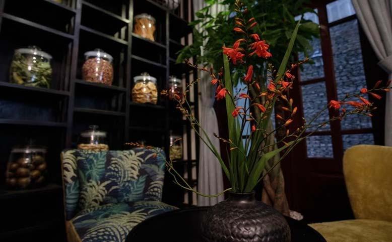 Không gian nội thất spa của hoa và cây cỏ