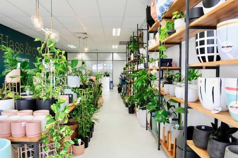 Sắp xếp và bố trí nội thất một cách khoa học